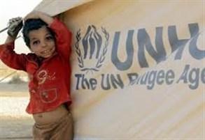 مفوضية اللاجئين عدد النازحين السوريين في لبنان 375 ألفاً