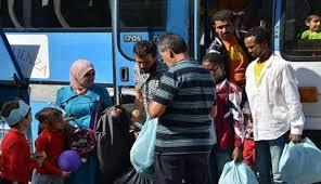 لاجئي القلمون